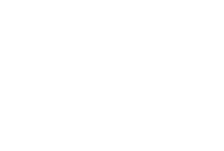 Allegheny Veterinary Services